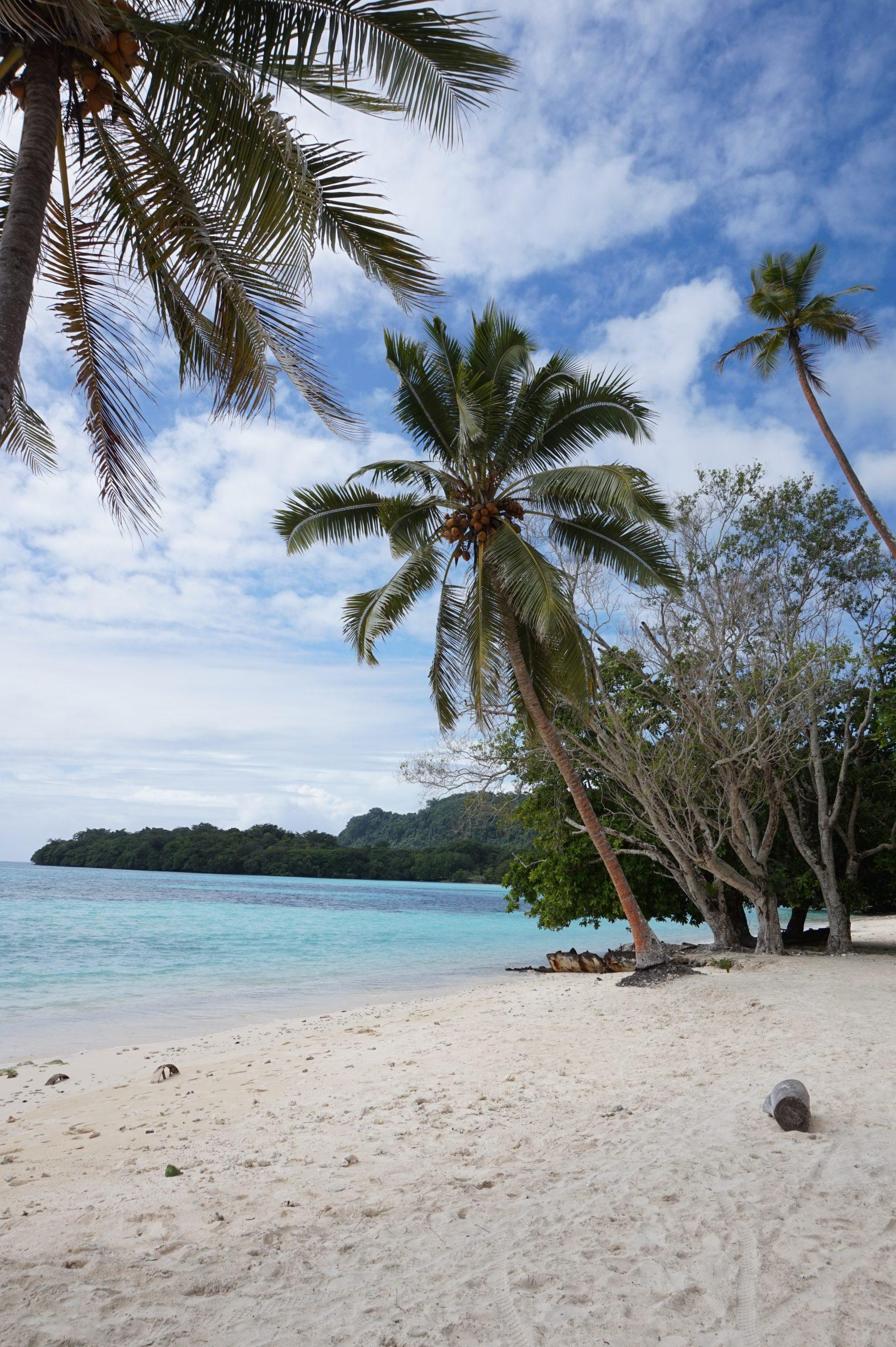 Forex License in Vanuatu